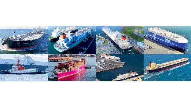 MOL has many multi-types ships